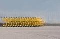 Yellow Shopping Carts
