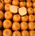 Yellow Square Edam Cheese