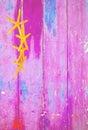 Yellow starfish on pink background Royalty Free Stock Photo
