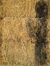 Yellow straw Royalty Free Stock Photo