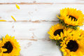 Yellow Sunflower Bouquet on White Rustic Background Royalty Free Stock Photo