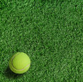 Yellow tennis ball on green grass Royalty Free Stock Images