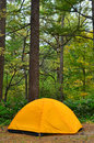 Yellow tent at campsite in forest a is erected a a Stock Image