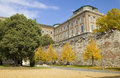 Yellow trees in buda castle budapest Stock Photography