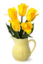 Yellow Tulips in Jug on White Royalty Free Stock Photo