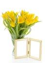 Yellow tulips photo frame light background Stock Photo