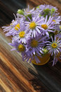 Yellow vase with bouquet of meadow purple daisies on wooden back Royalty Free Stock Photo