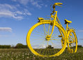 Yellow vintage bicycle green field Stock Images