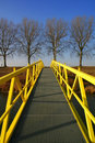 Yellow walking bridge Royalty Free Stock Photo