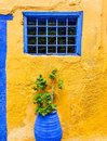 Yellow wall with blue window and pot plant in the old street on Greece. Greek style Royalty Free Stock Photo