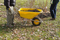 Yellow Wheelbarrow Stock Image