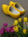 Yellow Wooden Shoes Royalty Free Stock Photo