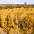 Yellow woods and big modern house in autumn day Royalty Free Stock Photo