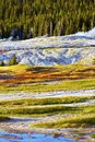 Yellowstone Harsh Conditions Royalty Free Stock Image