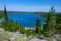 Yellowstone lake view hillside of pine trees overlooks the deep blue water of Royalty Free Stock Photos