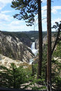 Yellowstone lower falls panorama panoramic view of of river Stock Photos