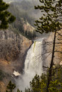Yellowstone Lower Waterfalls in the mist at Yellowstone National Park, Wyoming Royalty Free Stock Photo