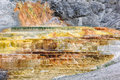Yellowstone palette falls mammoth hot springs wy Stock Photos