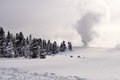 Yellowstone in winter snowy landscapes of park wyoming Royalty Free Stock Photos