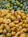 Yelow mango with green mango put together Stock Photo