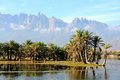 Yemen socotra island small oasis Royalty Free Stock Photos