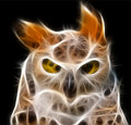 Yeux de hibou - vecteur Photo stock