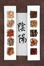 Yin und yang herbal medicine Lizenzfreies Stockbild