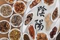 Yin y yang herbal medicine Imagenes de archivo