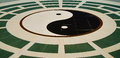 Yin yang floor ground background Stock Photography