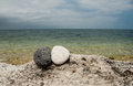 Yin yang stones on the beach black and white beack Stock Image