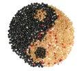 Yin Yang Symbol gebildet von den verschiedenen Korinthen Stockfoto