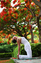 Yoga camel pose Royalty Free Stock Images
