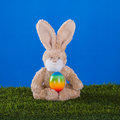 Yoga concept.Teddy rabbit playing sports with him Easter egg.