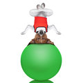 Yoga dog Royalty Free Stock Photo