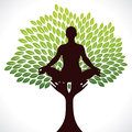 Yoga girl in tree Royalty Free Stock Photos