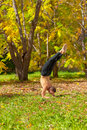 Yoga pinch mayurasana pose man exercises in the autumn forest Stock Images