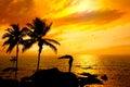 Yoga surya namaskar step Royalty Free Stock Photo