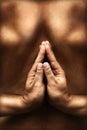 Yoga theme with reversed namaste Royalty Free Stock Photo