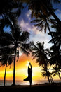Yoga tree pose around palm trees Royalty Free Stock Photo