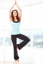 Yoga tree pose young beautiful female doing in sky rise gym with copy space Stock Photography
