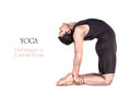 Yoga ushtrasana camel pose Stock Image