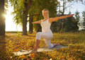 Yoga woman on autumn park background Royalty Free Stock Photos
