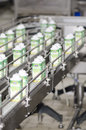 Yoghurt packaging line industrial at danone romania factory in bucharest the groupe danone is a french food products multinational Royalty Free Stock Image
