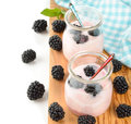 Yogurt with blackberries on a white background Royalty Free Stock Photos