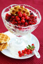 Yogurt with caramelized berries Stock Images