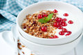 Yogurt with granola and red berries in ceramic bowl for breakfas Royalty Free Stock Photo