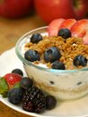 Yogurt parfait with fruit and granola garnished with fresh fruit Stock Photography
