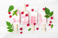 Yogurt popsicles with fresh raspberry. Top view. Royalty Free Stock Photo
