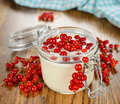 Yogurt with red currants on a brown table Royalty Free Stock Images