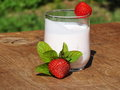 Yogurt whit fruit with on a board made of oak wood in the garden Royalty Free Stock Images